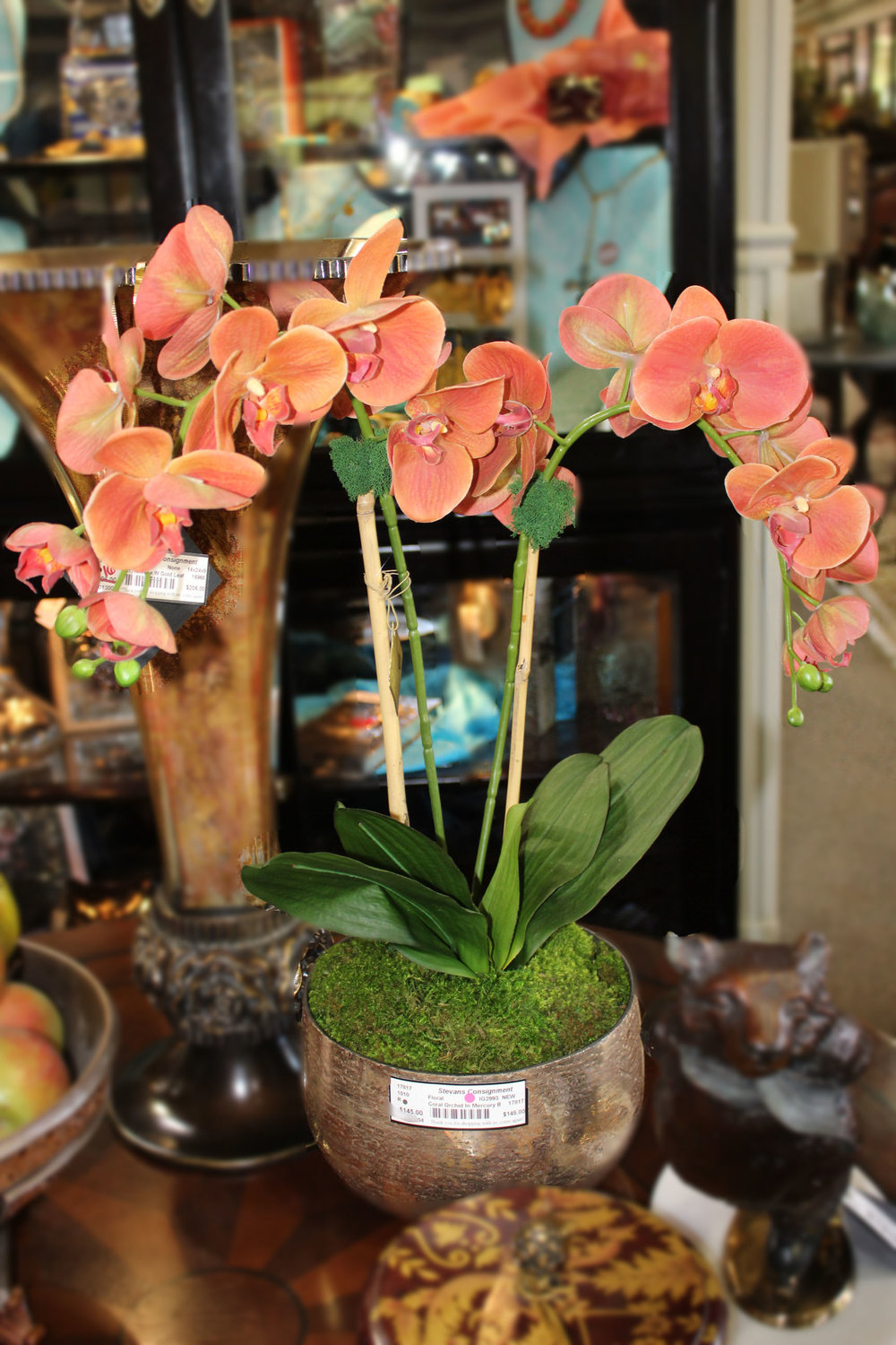 NEW Coral Orchid in Mercury Bowl