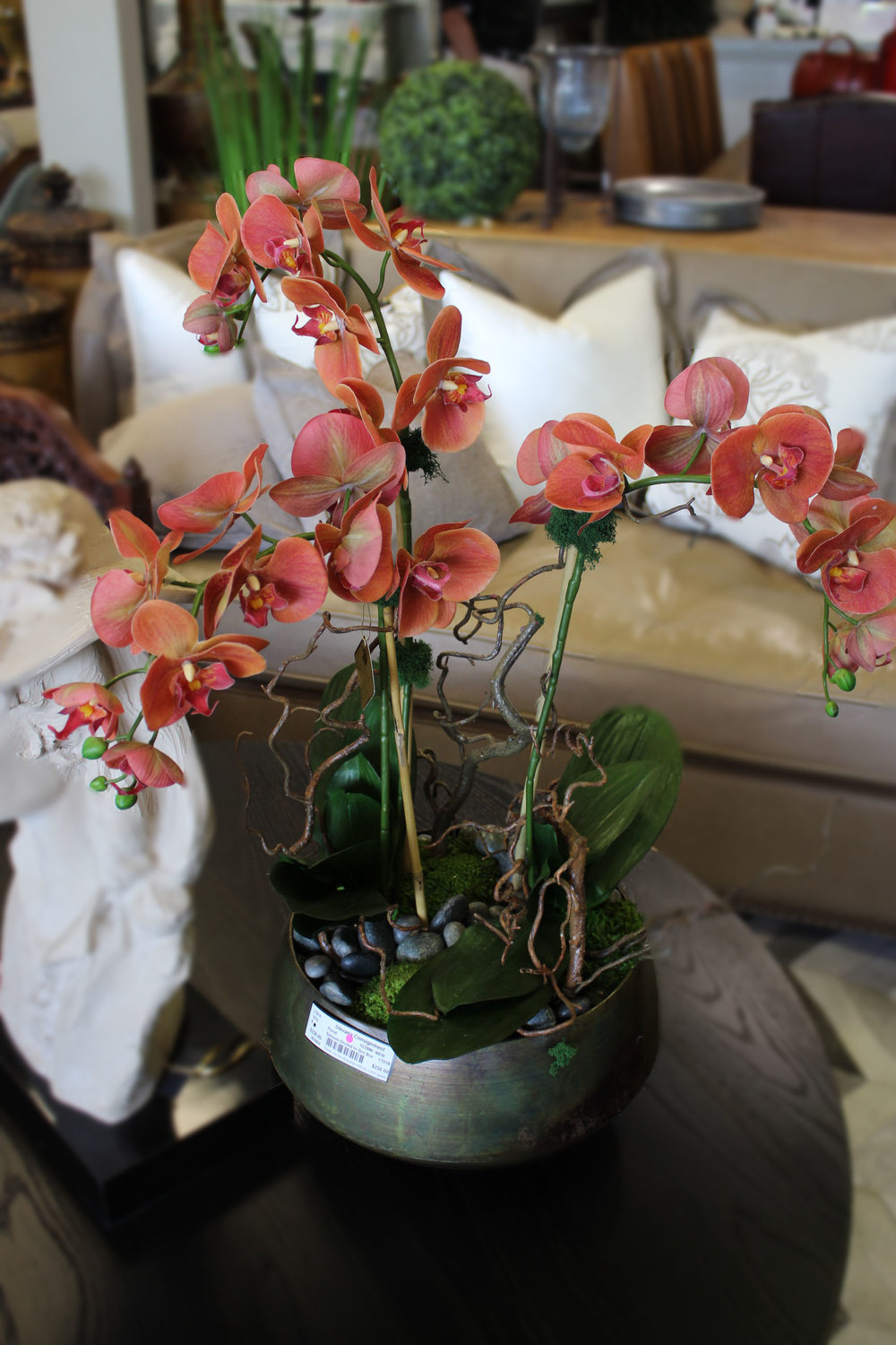 NEW Salmon Orchid in Green Bowl