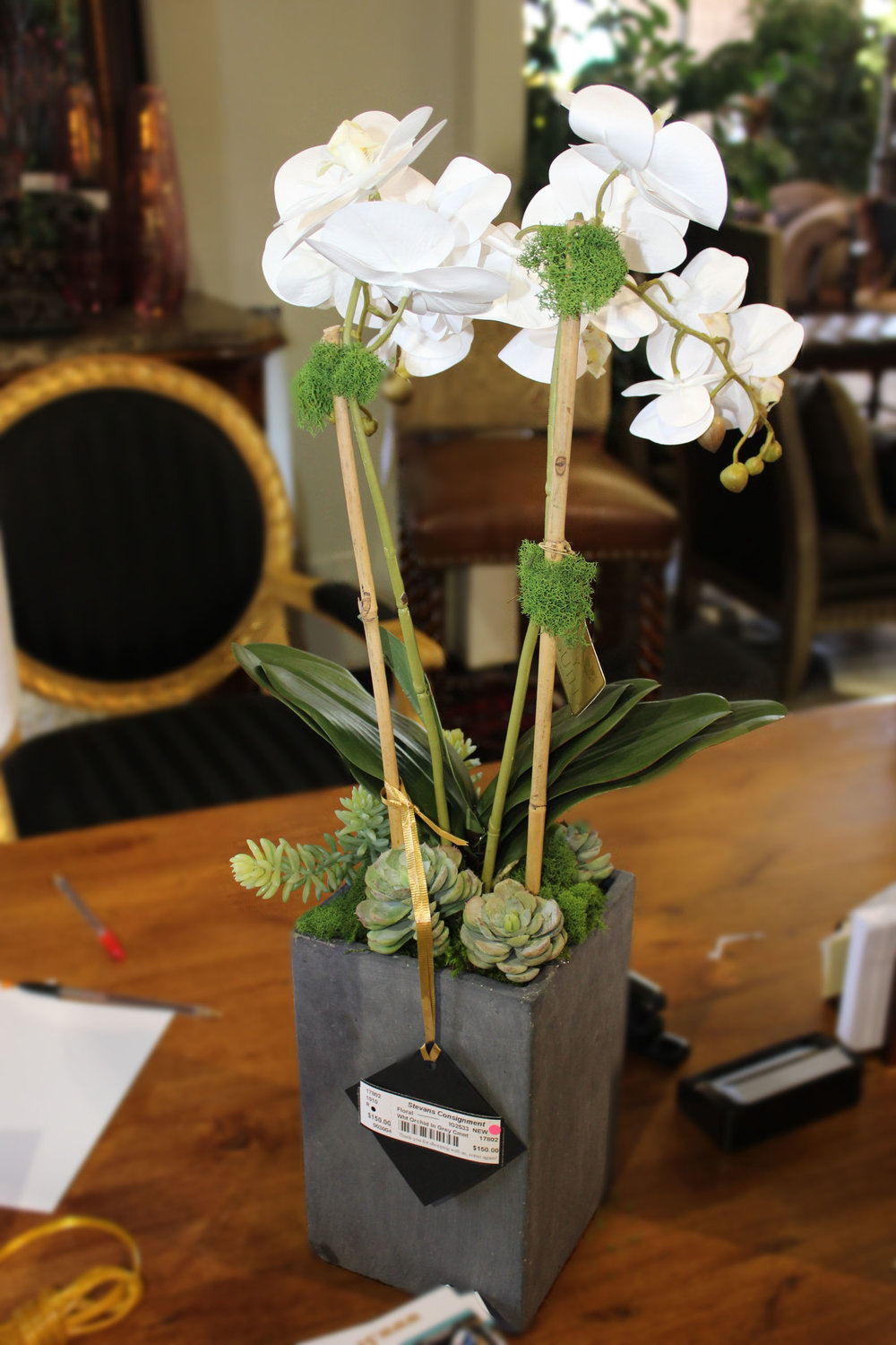 NEW White Orchid in Grey Cement Vase