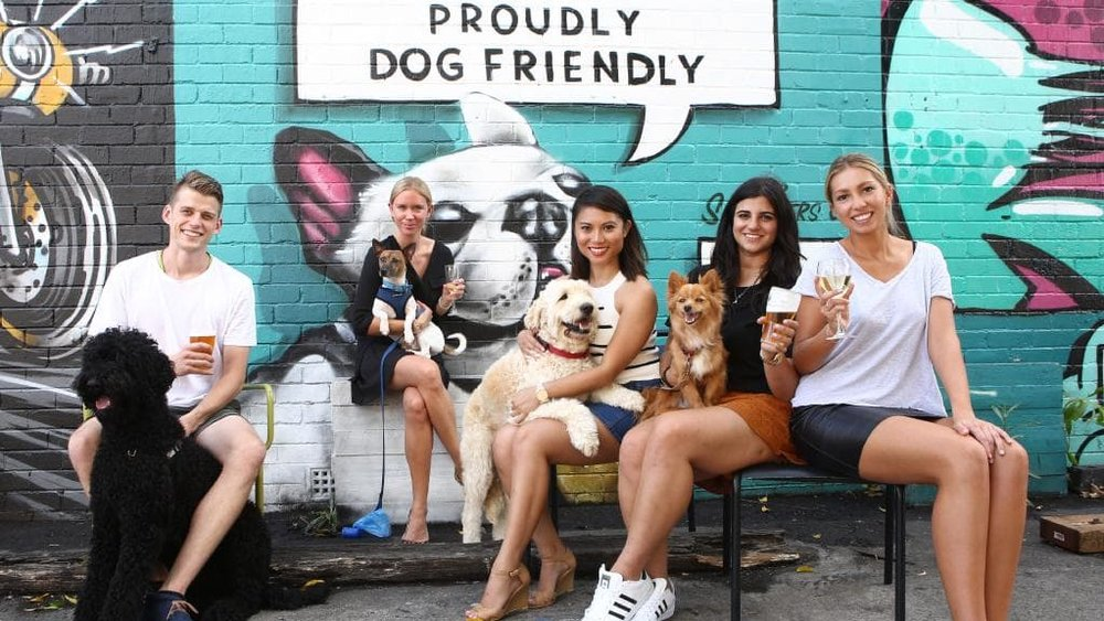 pet friendly pub date ideas sydney