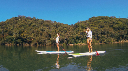 Stand up paddle boarding safari - Hosted by EcoTreasures