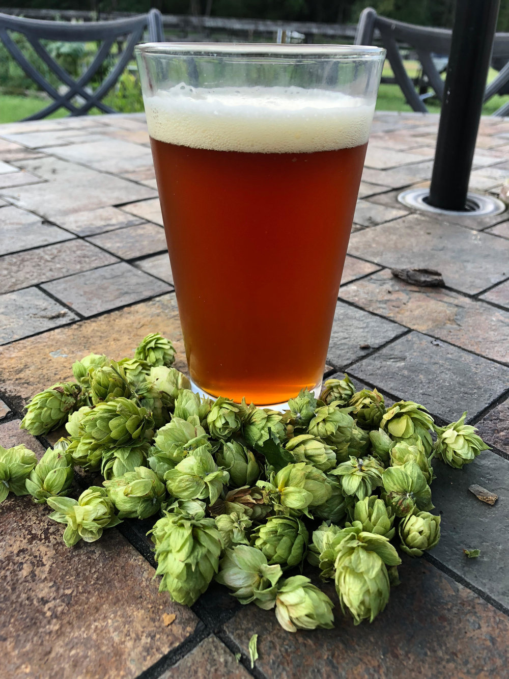 Blue Force Tracker IPA - This IPA celebrates a symphony of hops. Maltiness fades to the background as aromas of citrus, floral, pine, tropical fruits and stone fruit are intertwined throughout every sip. The mouthfeel is medium and finish is clean, leaving only the lingering scent of the hops in your mind.8.3%ABV