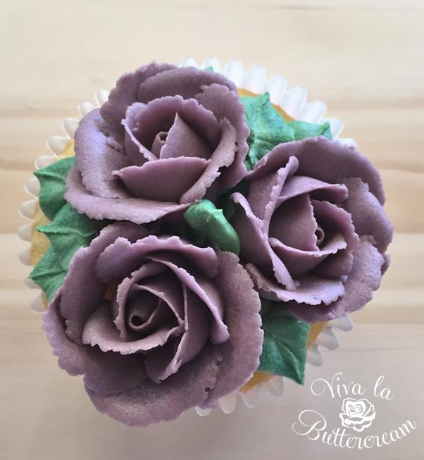 Boysenberry Roses