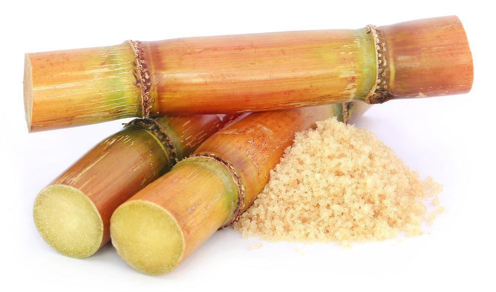 Raw Sugar Cane