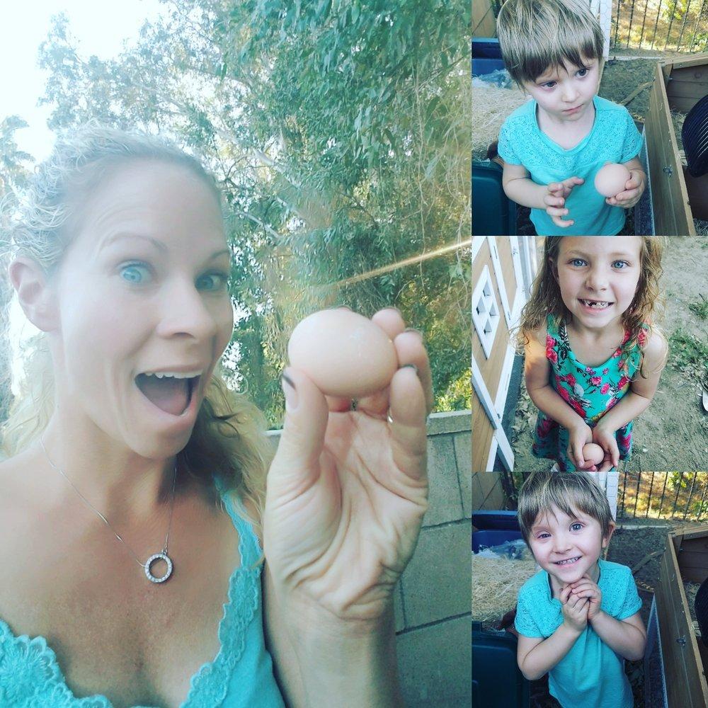 Family egg harvest.jpg