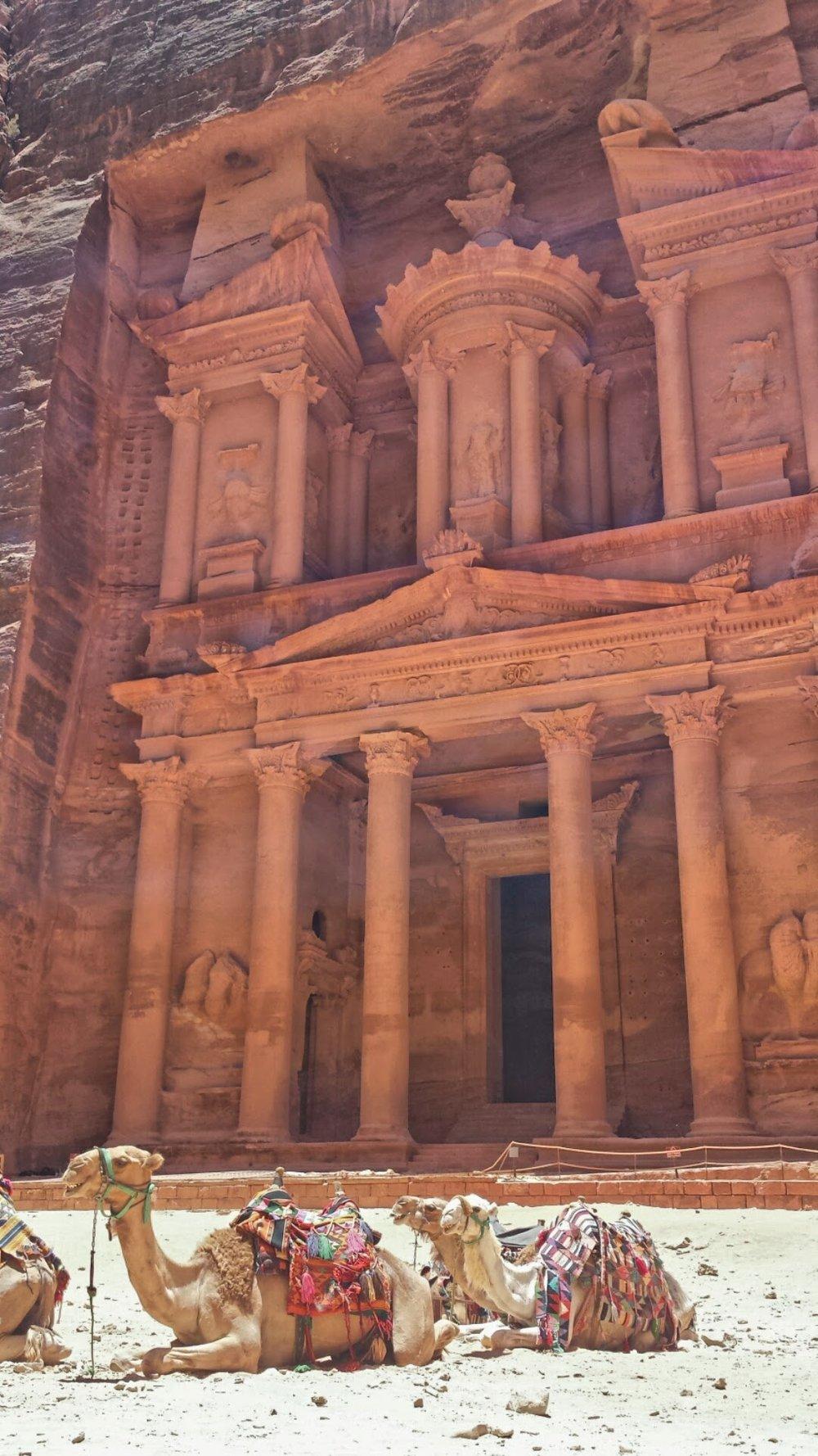 Petra, Jordan, Summer 2014
