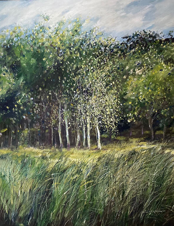 Copse of Birches