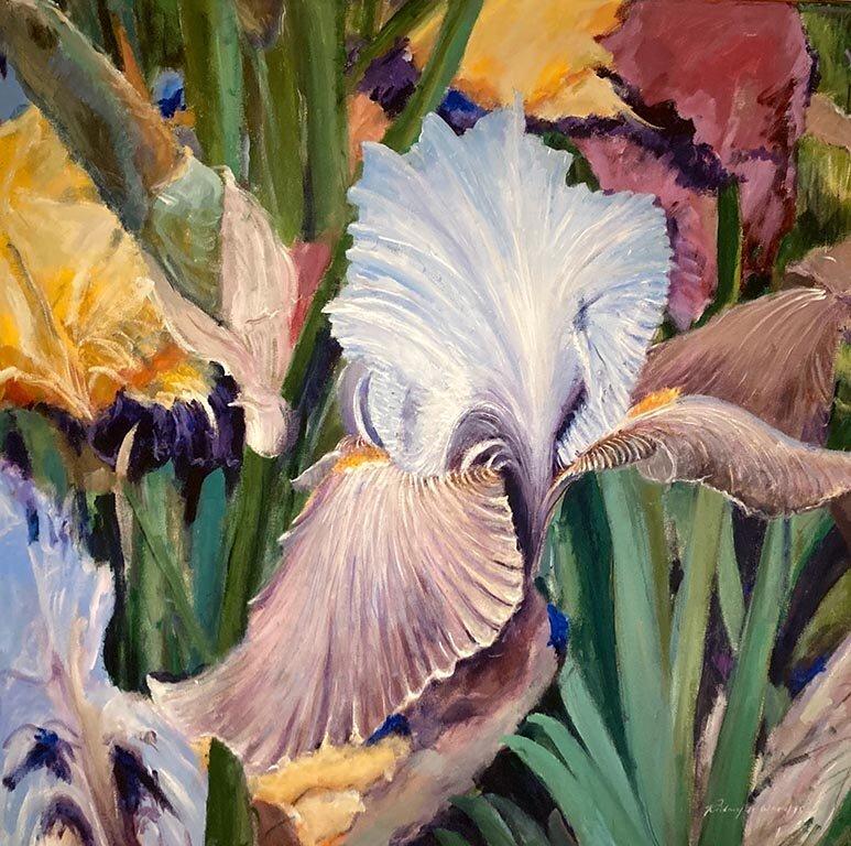 Chelsea Iris