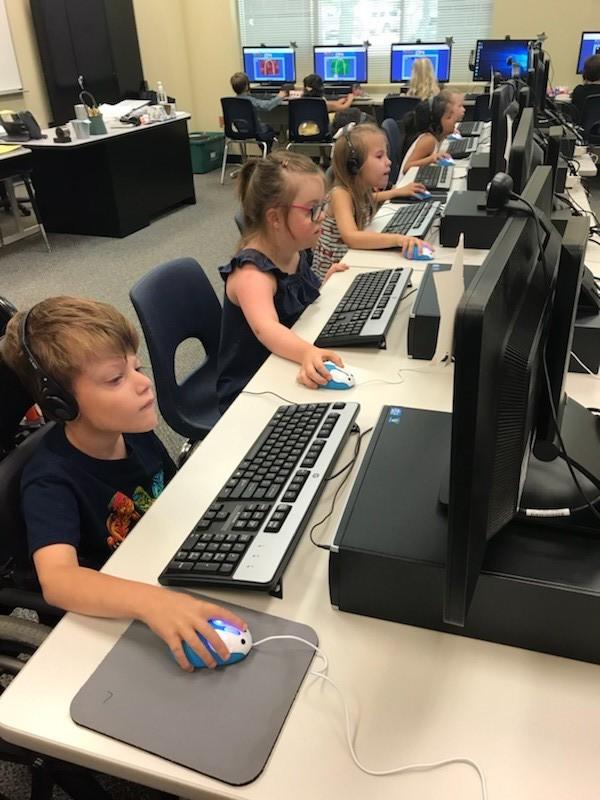 Computer mice 2.jpg