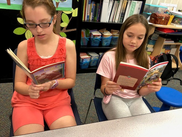 Sound out chapter books in Mrs. Meschko's class.jpg