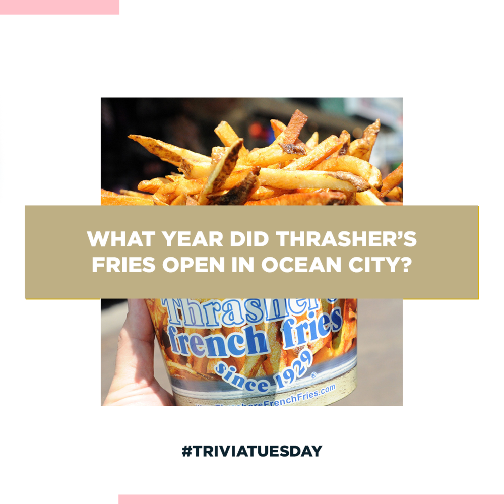 Trivia Tuesday | Engage Your Followers & Local Community