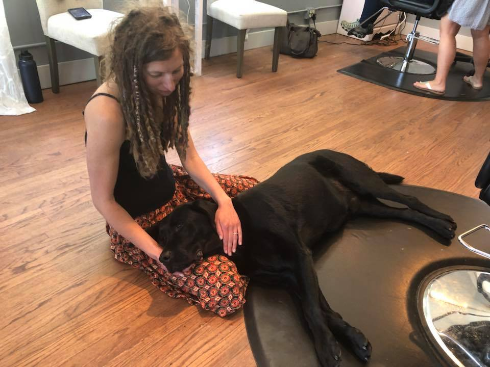 Reiki for Dogs.jpg