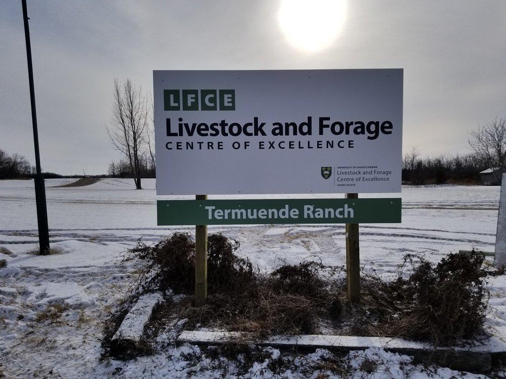 LFCE, Saskatoon