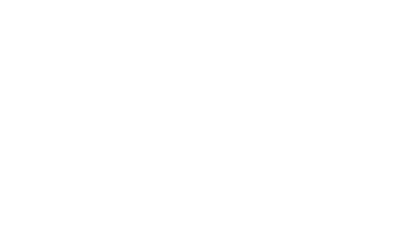 Bridge Angel Investors