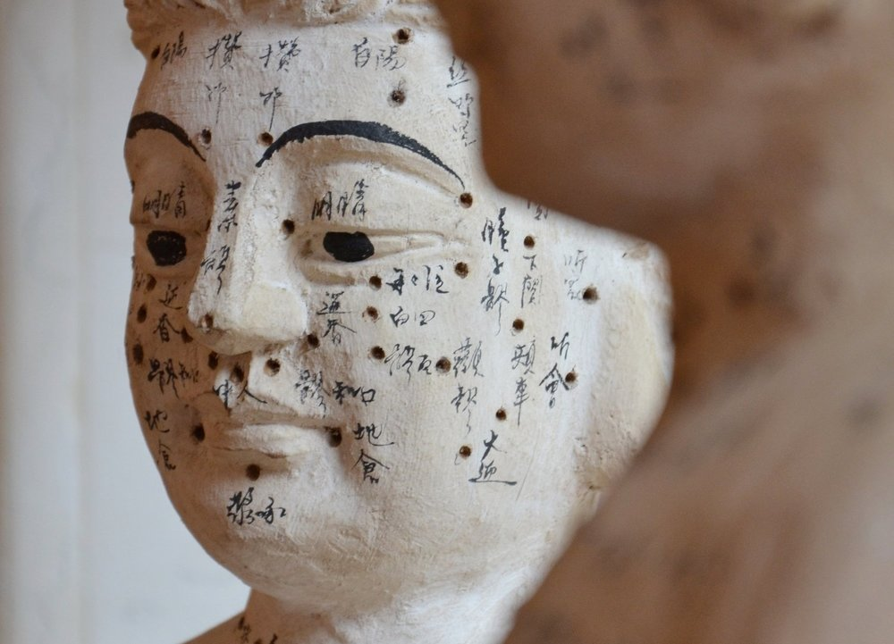 acupuncture-meridians.jpg