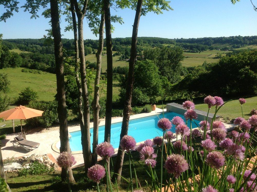 Zwembad met bieslookbloemen .JPG