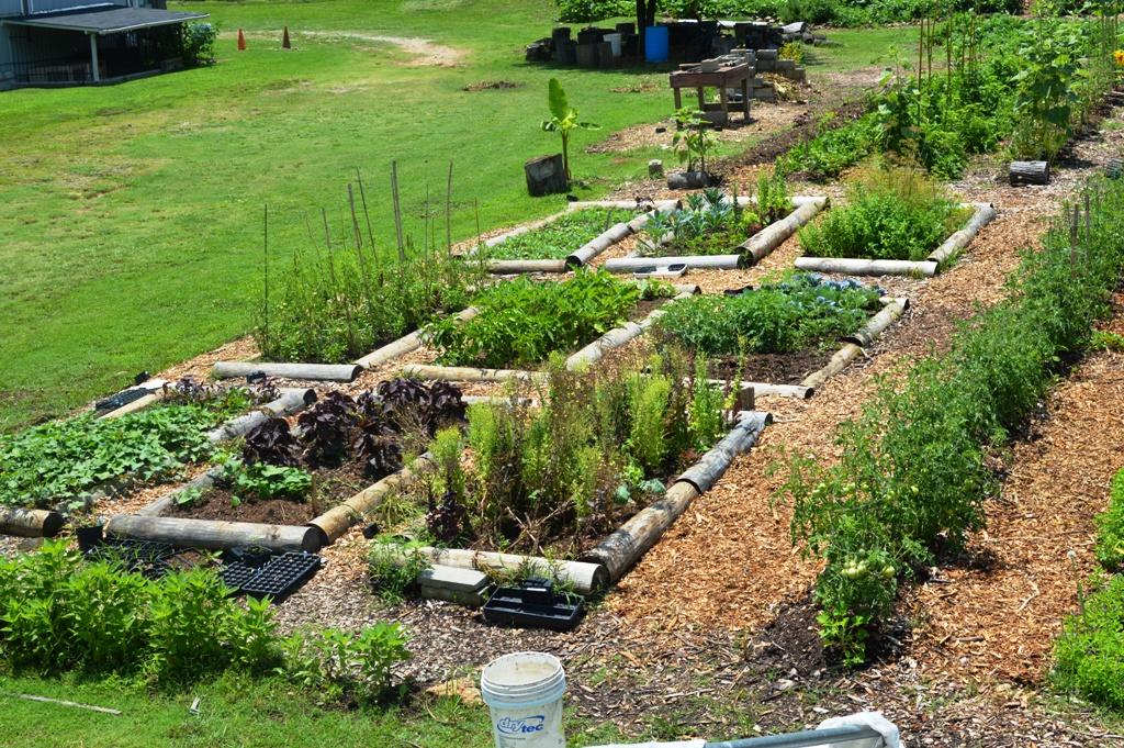 Good Shepard Community Farm - Atlanta - The City Dweller (13)