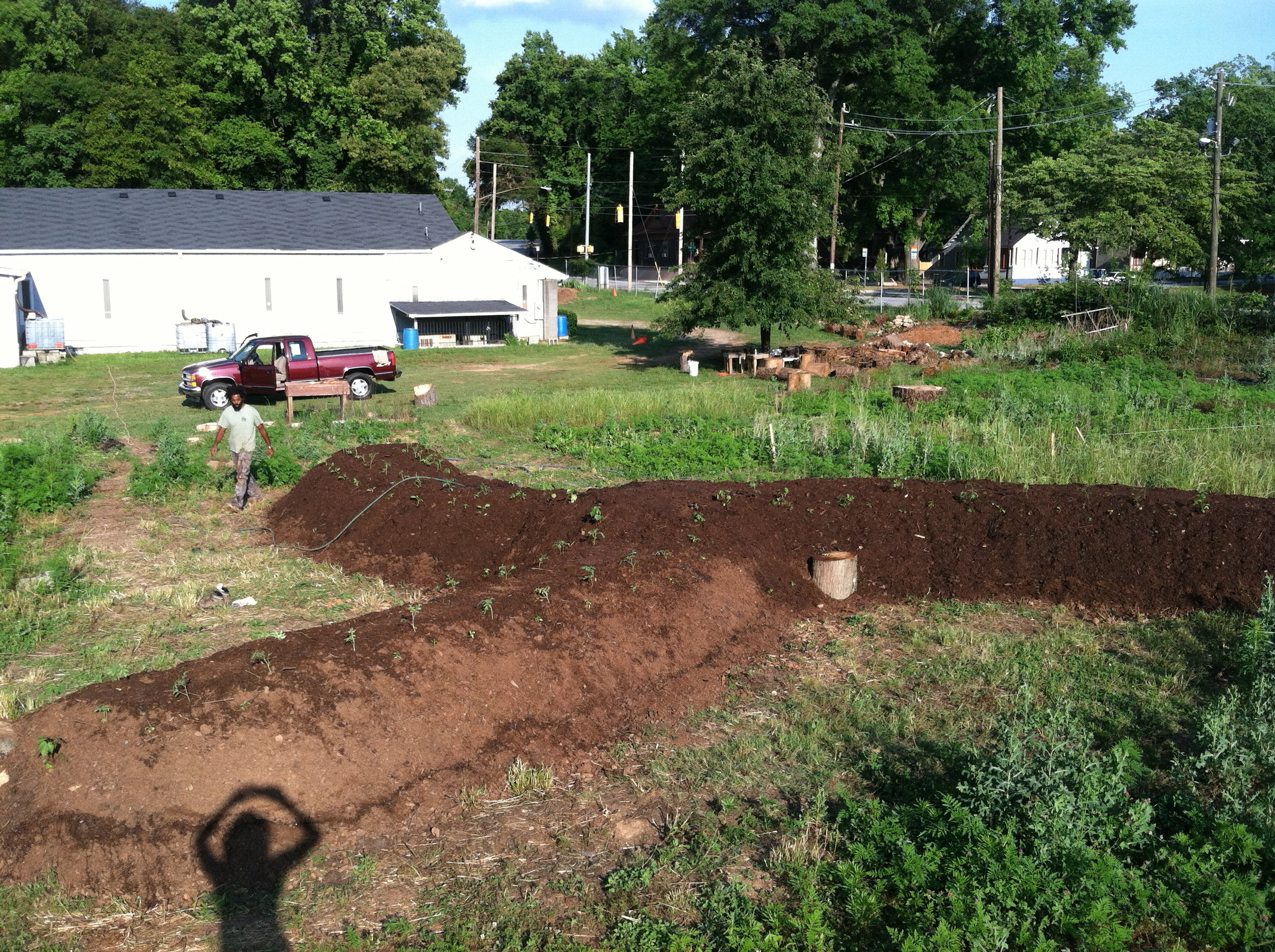 Good Shepard Community Farm - Atlanta - The City Dweller (38)