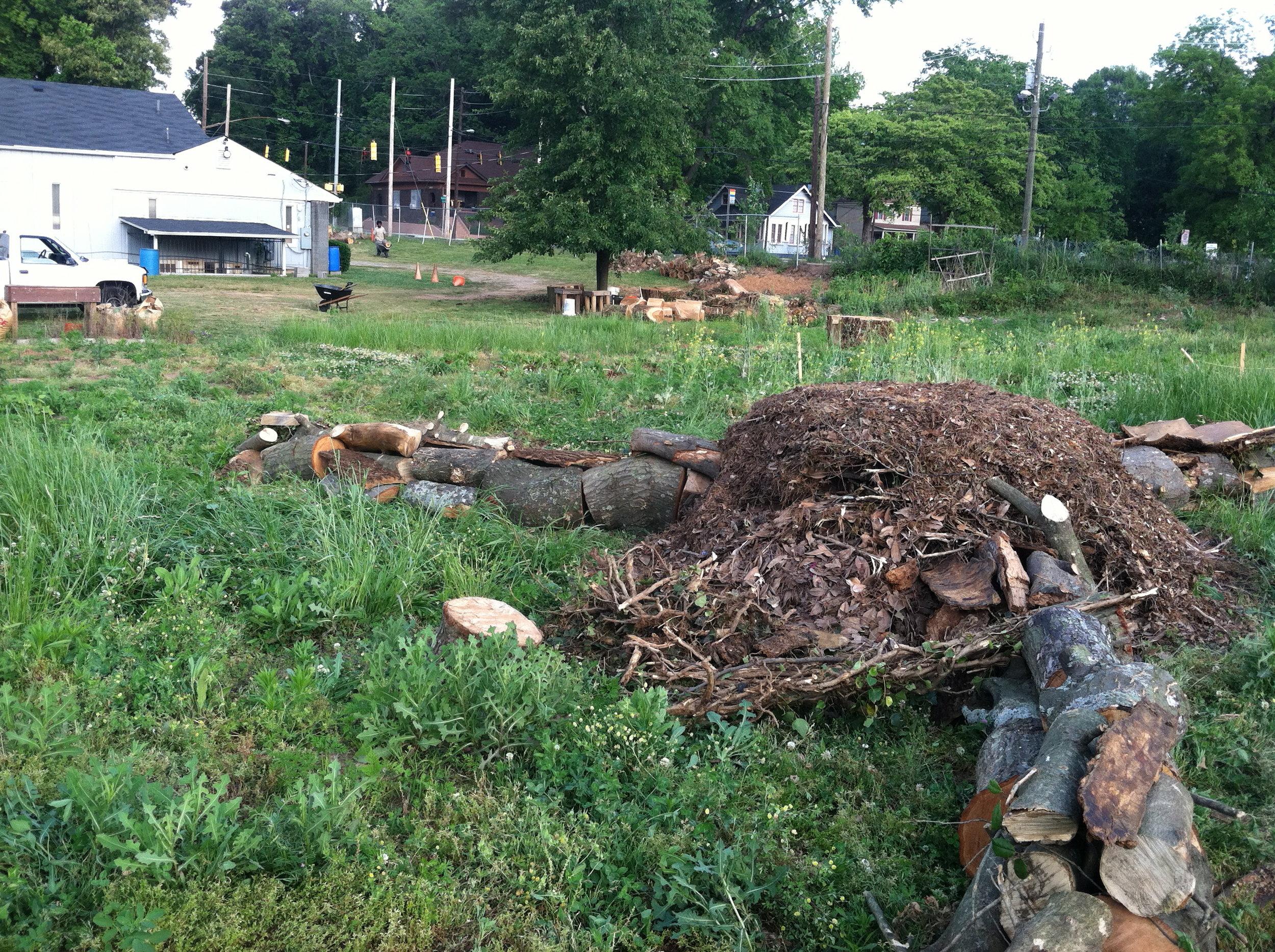 Good Shepard Community Farm - Atlanta - The City Dweller (39)