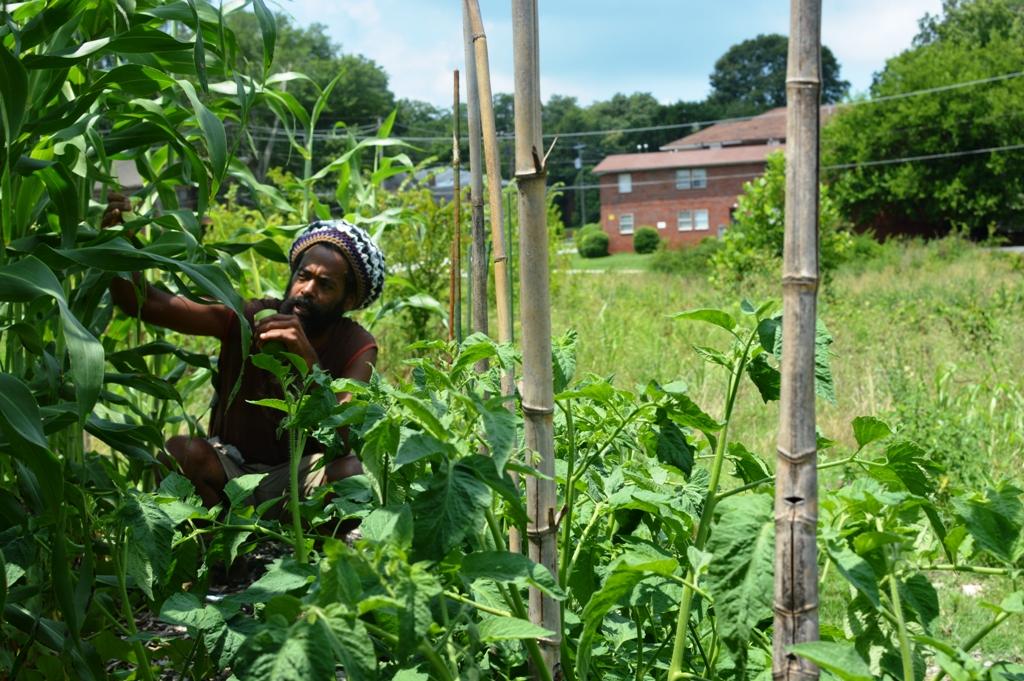 Good Shepard Community Farm - Atlanta - The City Dweller (6)