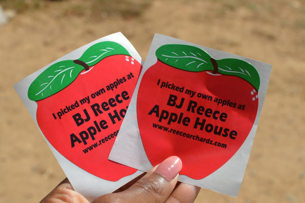 Apple Picking - Atlanta - The City Dweller (45)