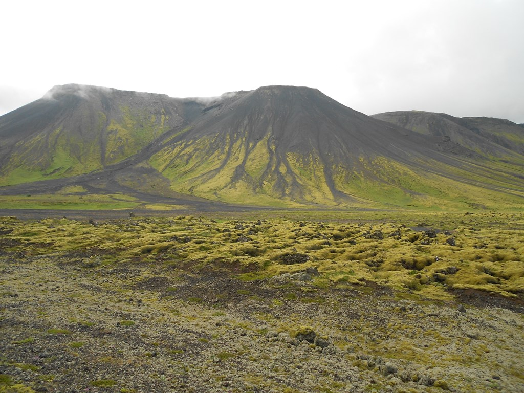Iceland - The City Dweller (2)