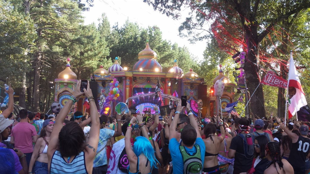 TomorrowWorld 2014 - Atlanta - The City Dweller (10)