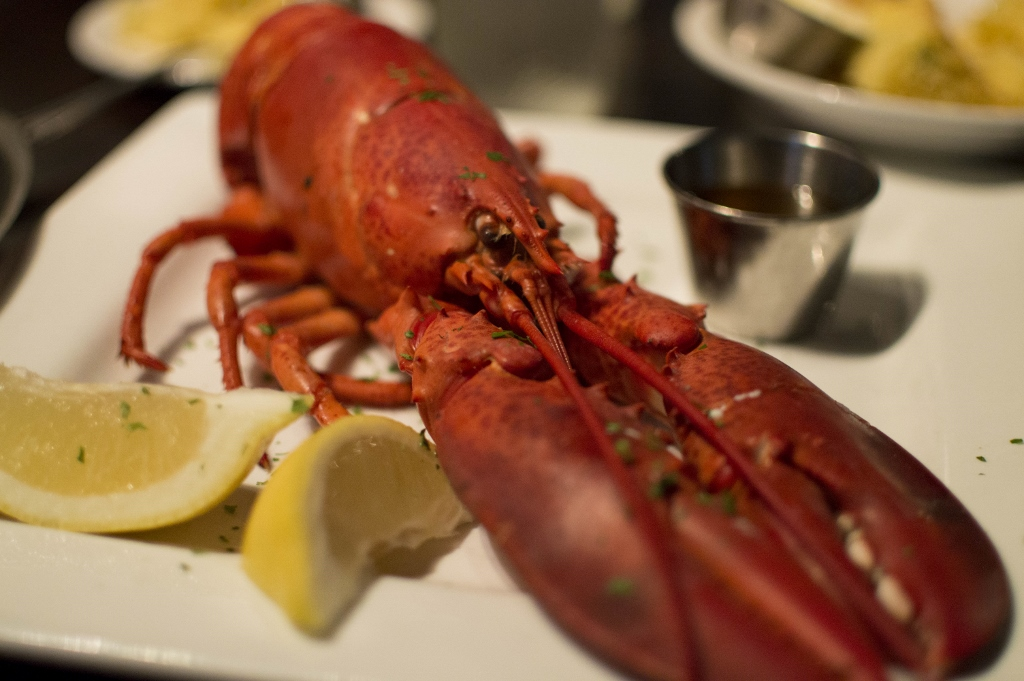 Goin' Coastal Lobster - Atlanta - The City Dweller (8)