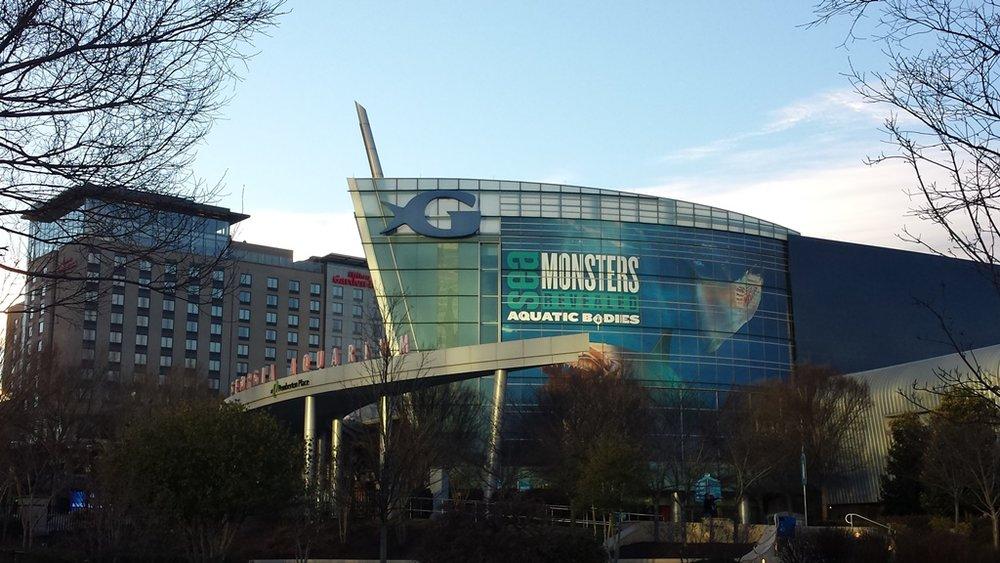 Sips Under the Sea - Georgia Aquarium - Atlanta - The City Dweller (64)