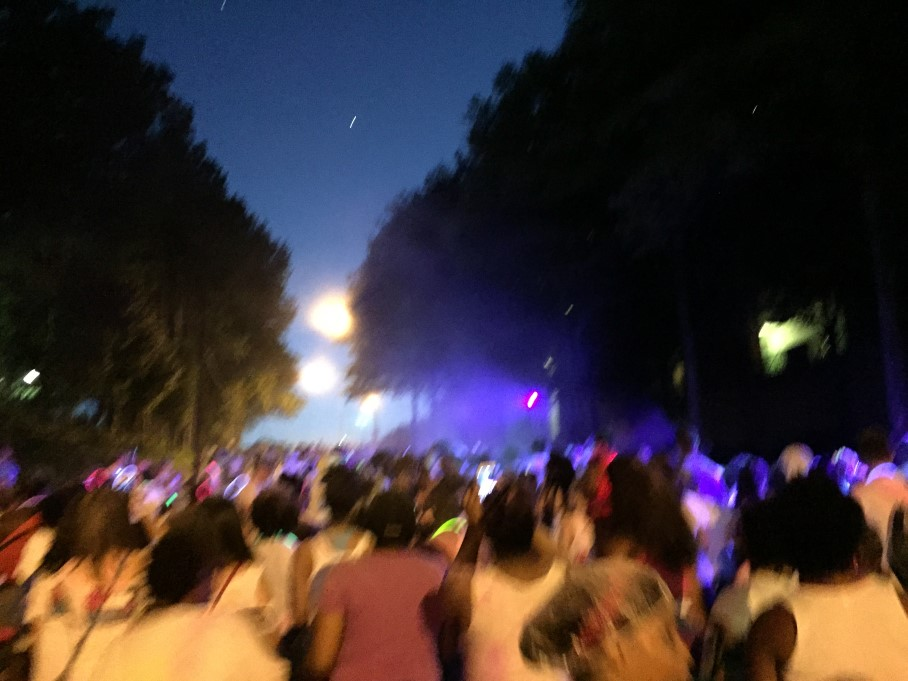Color Fun Fest 2015 - Atlanta - The City Dweller (35)