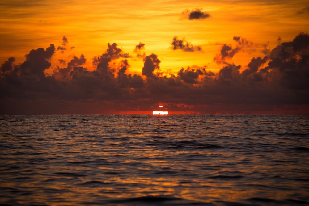 Miami Beach Kizomba Festival 2015 - The City Dweller (4)