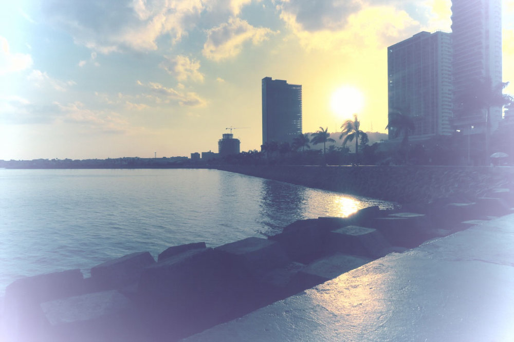 Panama - The City Dweller (138)