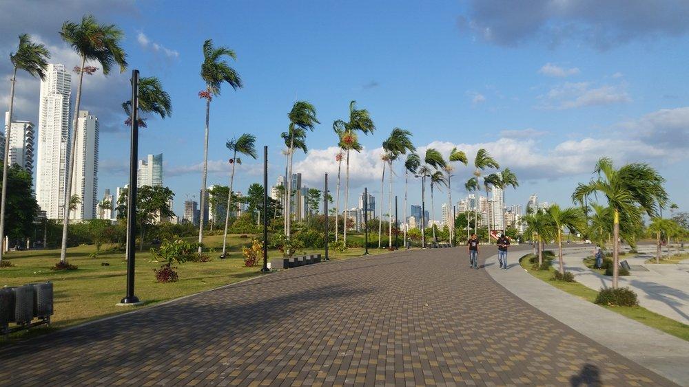 Panama - The City Dweller (51)