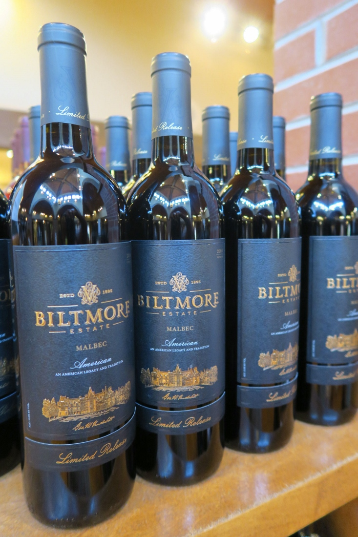 Biltmore - Asheville - The City Dweller (52)