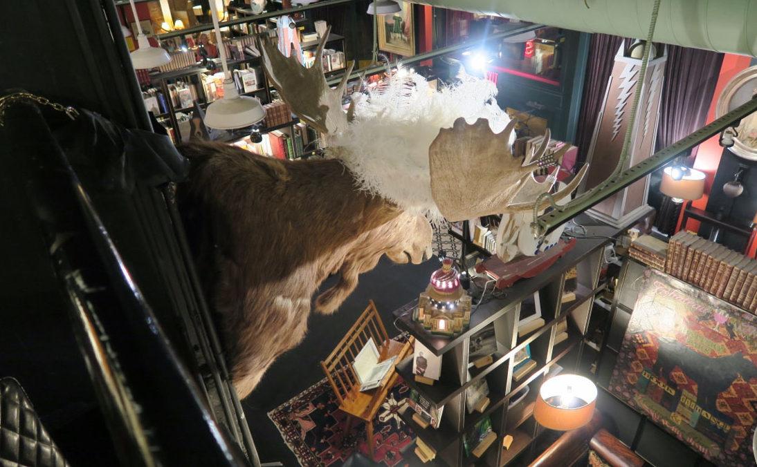 Bookstore - Asheville - The City Dweller (7)