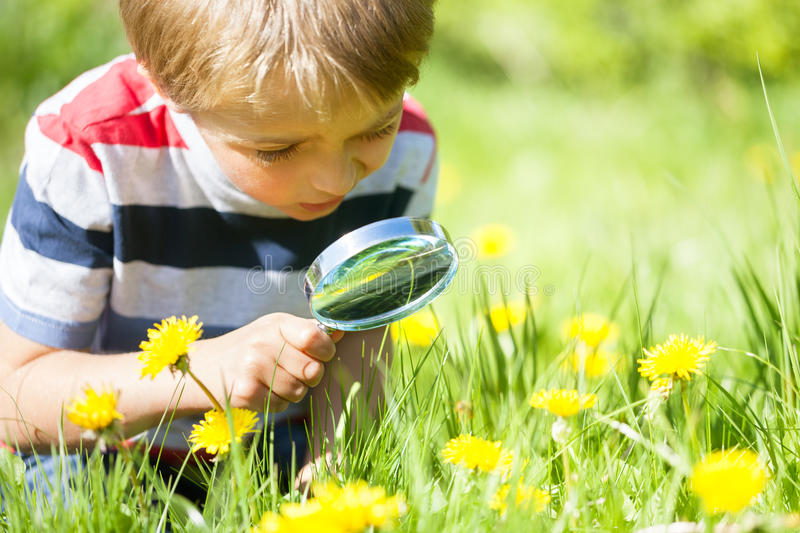 child-exploring-nature-young-boy-meadow-magnifying-glass-looking-insects-56104796.jpg