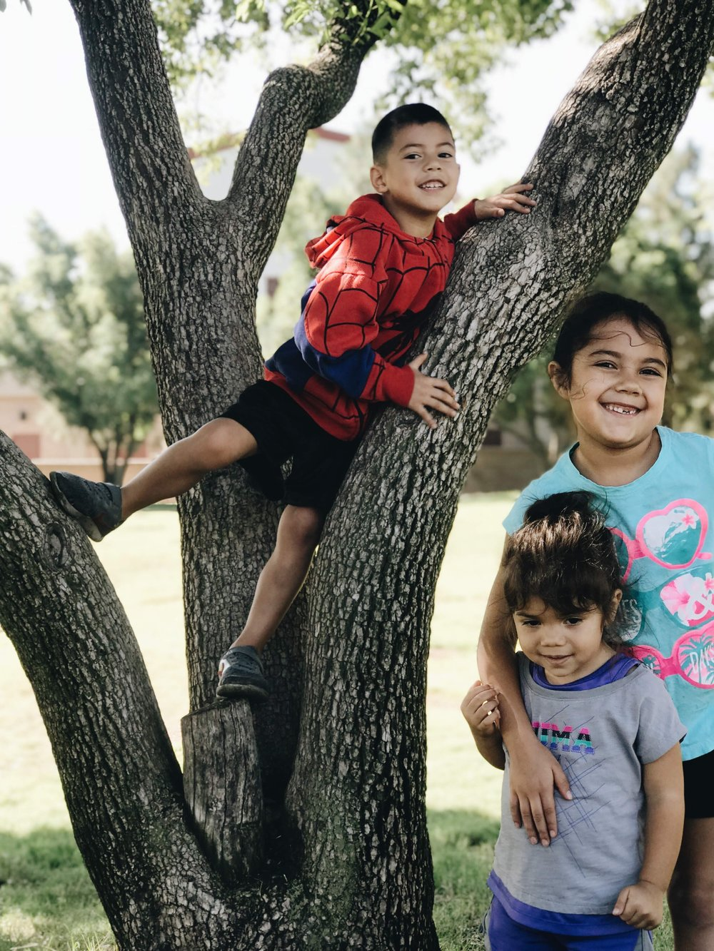 The kids actually navigated away from the park to climb trees! We were literally at the park this day for hours because of the nice weather!