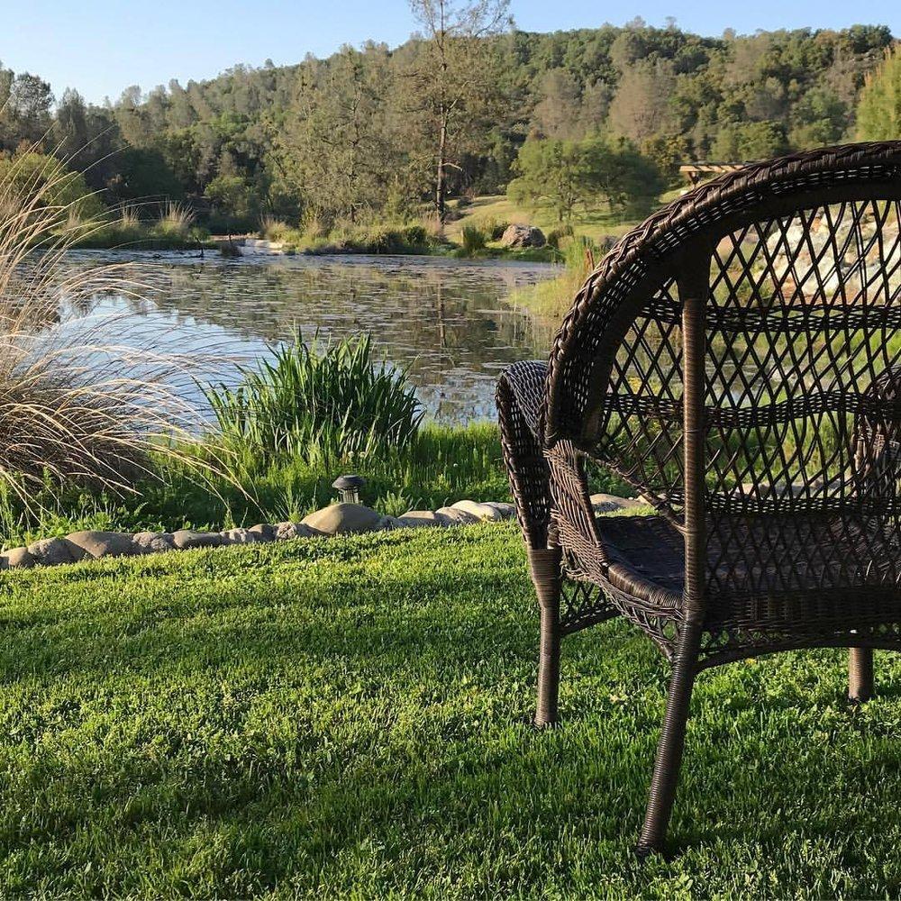 Fuck off, I'm busy.  -  #california #ilovecalifornia #escapism #solitude  (at North Placerville, California)