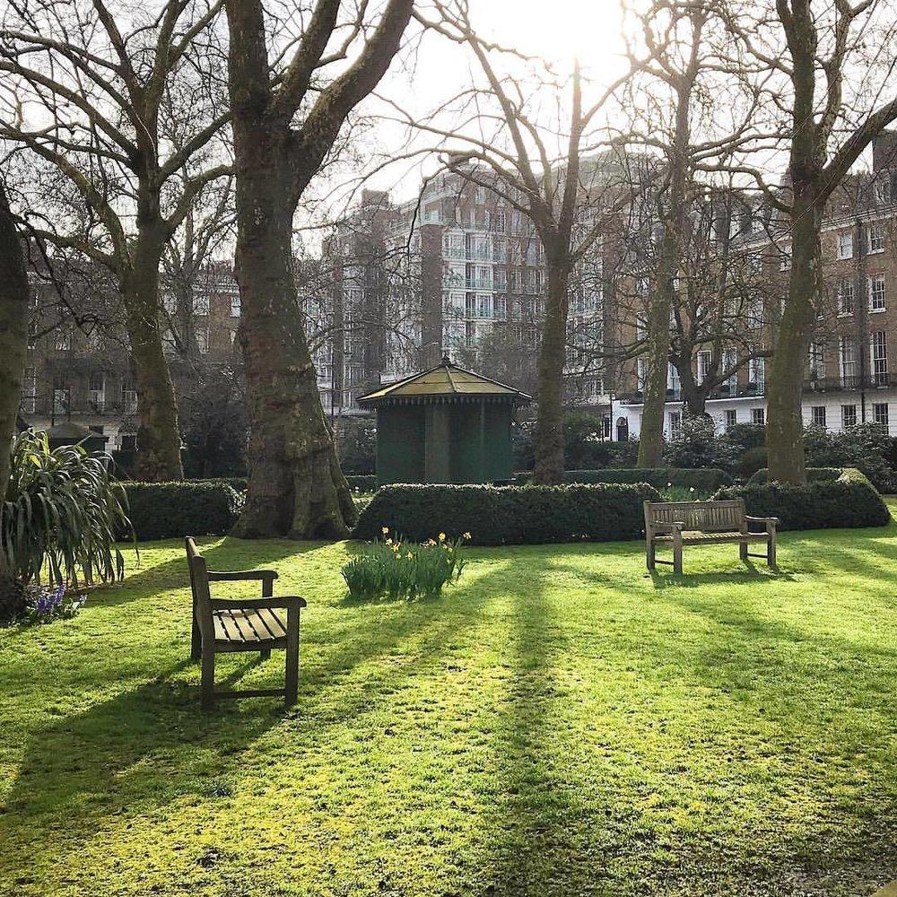 Respite in the center of London.    #unitedkingdom #england #london #park #greenspace #tokersparadise  (at Marylebone London)