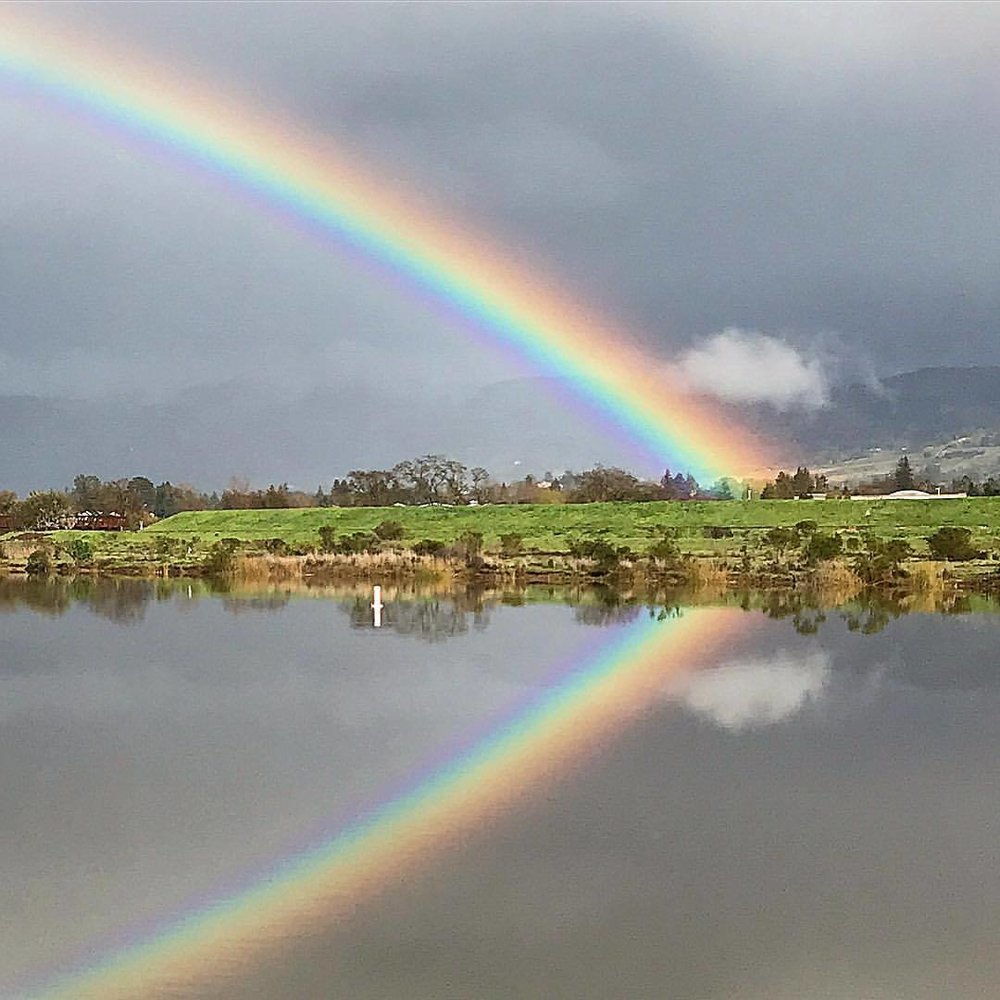 Rainbow reflected on Napa River.  -  #california #napa #rainbow #rainyseason  (at Napa River Trail)