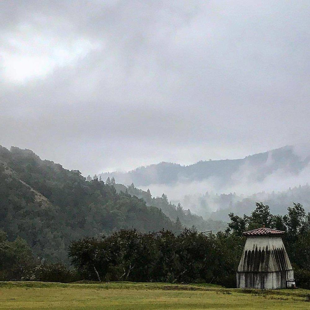 Between the rain showers.  -  #california #ilovecalifornia #winterincalifornia #napavalley  (at Oakville, California)