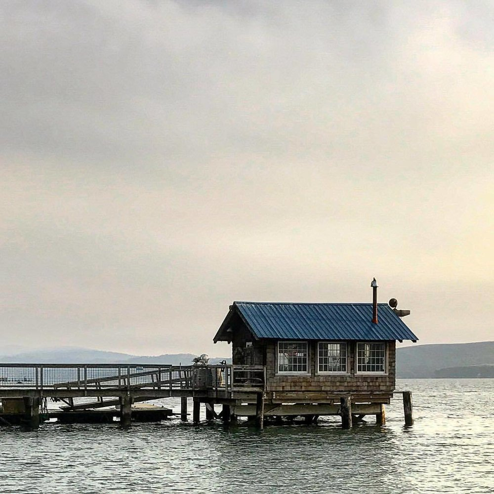 #cabinporn  (at Tomales Bay State Park)