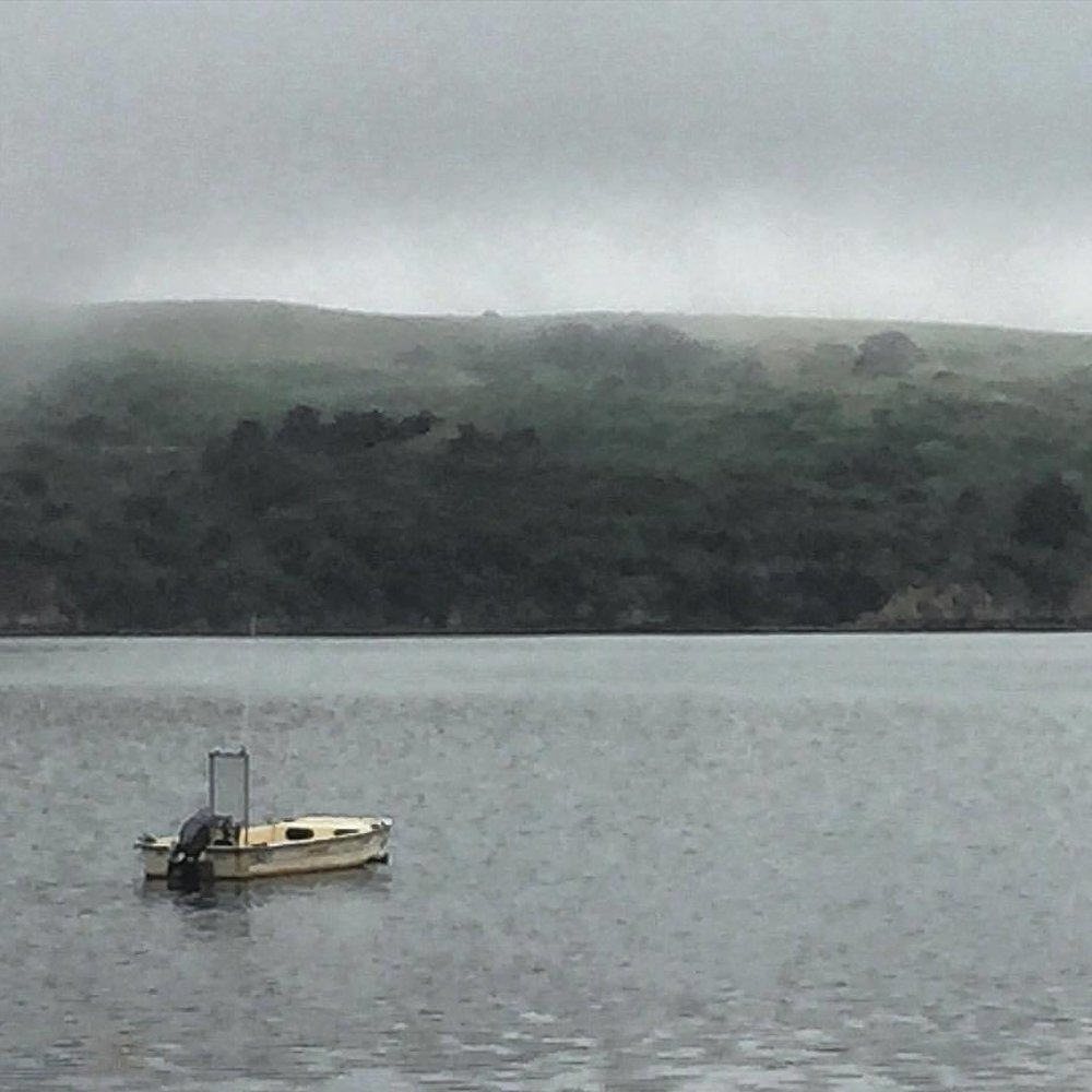 Early morning fog starting to pull back its veil over Tomales Bay.  -  #california #westmarin #fog  (at Point Reyes National Seashore)