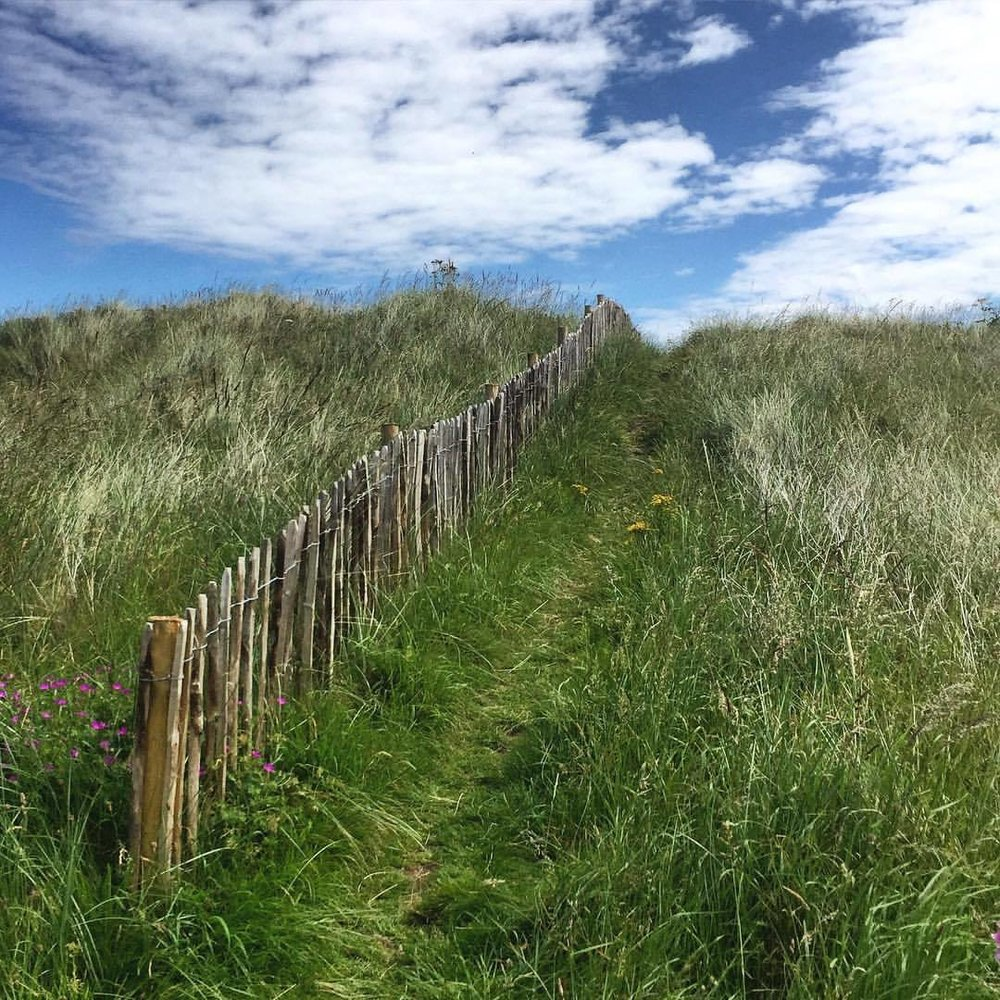 The path always reveals itself.  #england #uk #northumberland #walkingholiday  (at Beadnell Bay)