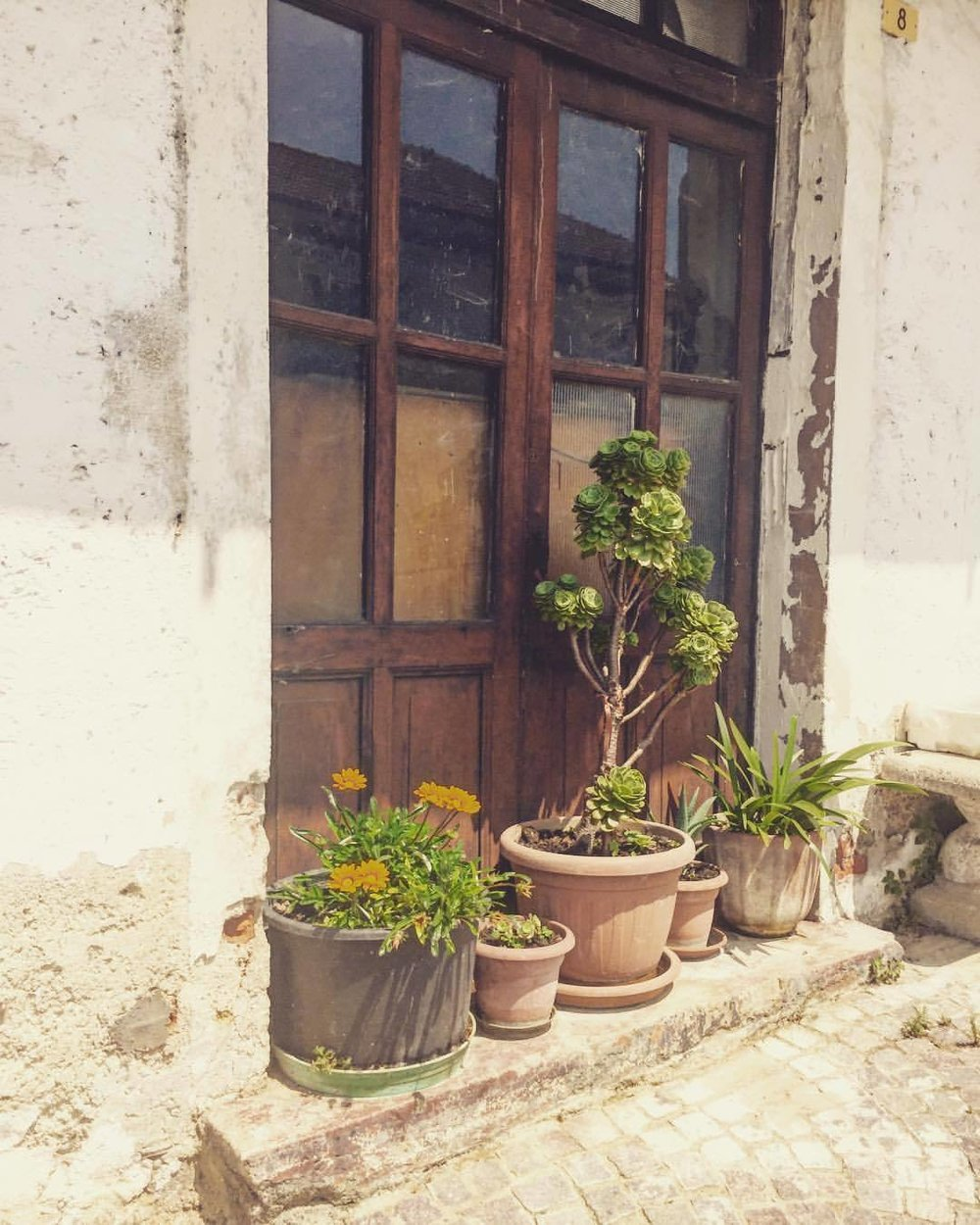 Hidden corner.  #italy #piedmont #eastbumfuck  (at San Benedetto Belbo)