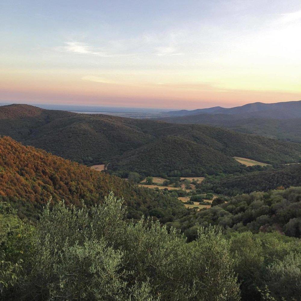 Dusk.  #italy #sunset #tuscany #swallowsatsunset  (at Vetulonia)