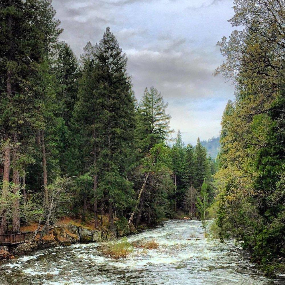Winter's melt.  #california #spring #intothewoods  (at Eldorado National Forest)