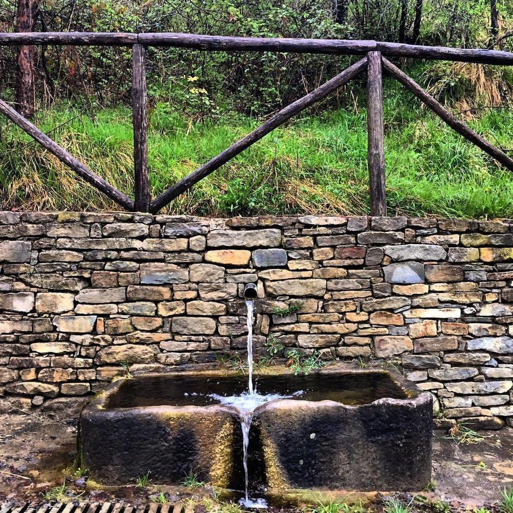 L'acqua.  #italy #piedmont #langhe #spring