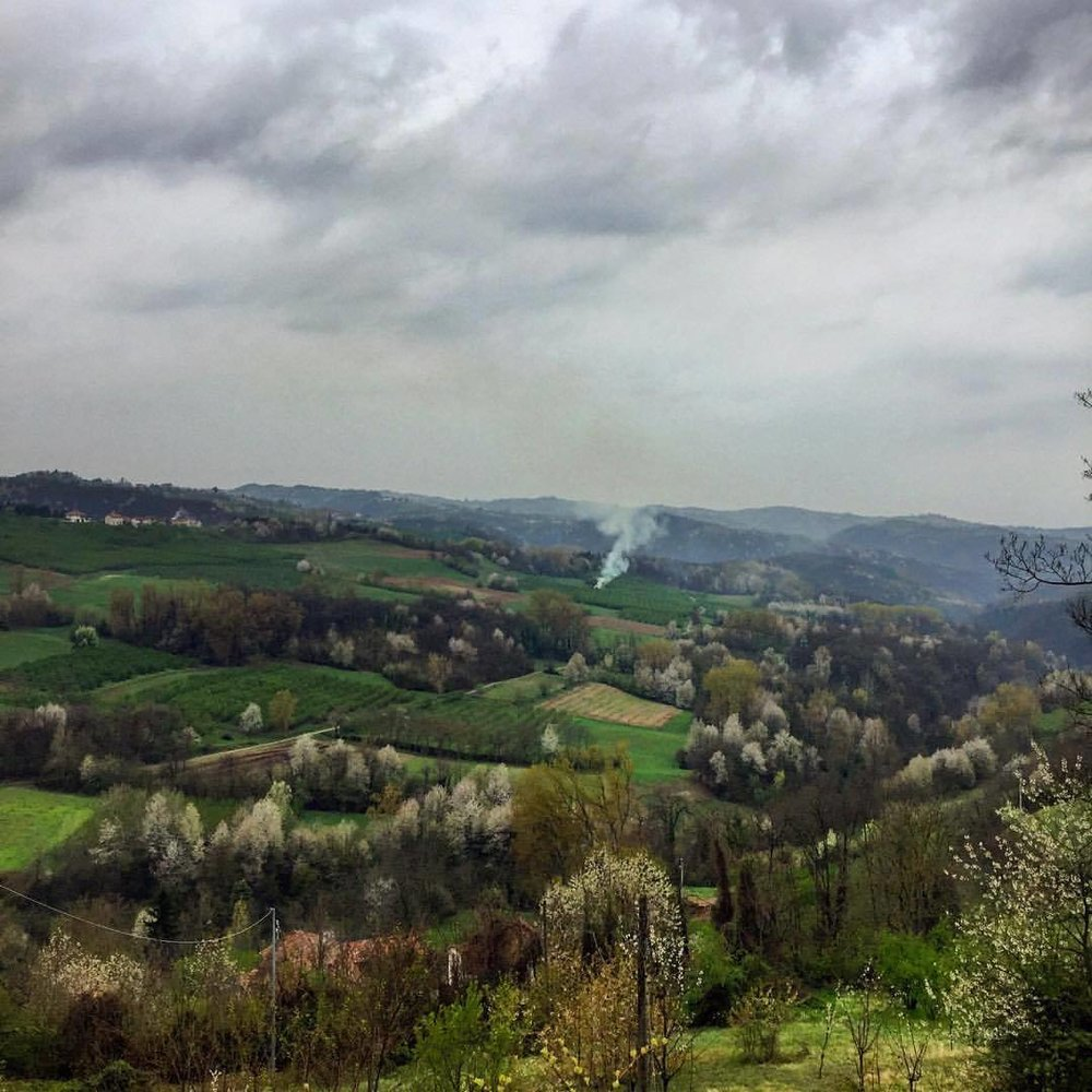 Burning cuttings from spring pruning.  #italy #langhe #piedmont #spring #nature  (at Bossolasco)