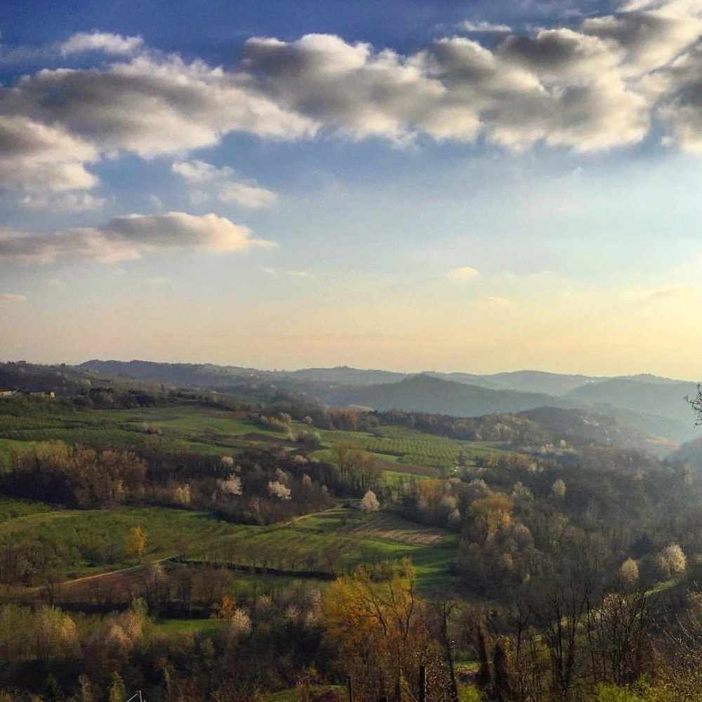 Springtime in the Langhe.  #italy #piedmont #langhe #alpes  (at San Benedetto Belbo, Italy)